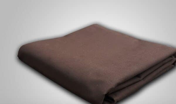 canvas bruin